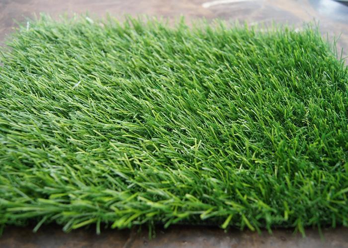 Vestačka trava 18690