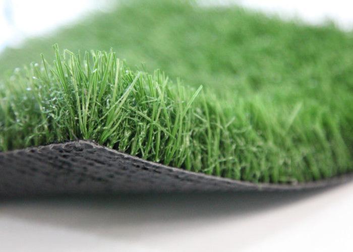 Vestačka trava ARKADIA 42583